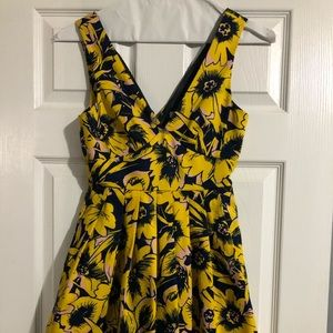 Spring J. Crew Dress